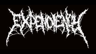 Expendiency - Baby Killer (Devourment Cover) Demo Live 2012.wmv