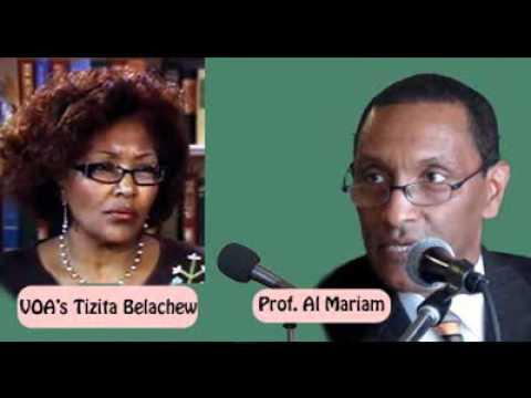 Constitution guarantees no right for power succession: prof. Al Mariam