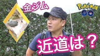 【ポケモンGO】金ジムを作るために!ソロレイドの限界を知る【カイリキー】 thumbnail