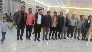 Halay Show