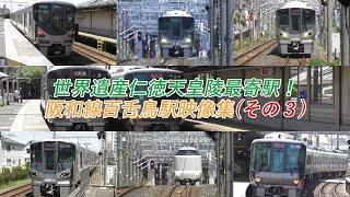 阪和線百舌鳥駅を225系5100番代などの普通が発着、225系5100番代と223系...