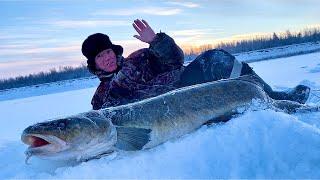 Рыбалка в 48 градусов на неделе срезаем крючки
