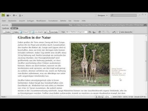 Modernes Webdesign Mit CSS - 05. Bildunterschrift Ausrichten