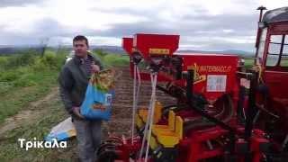 DEKALB Corn Greece - December 2014