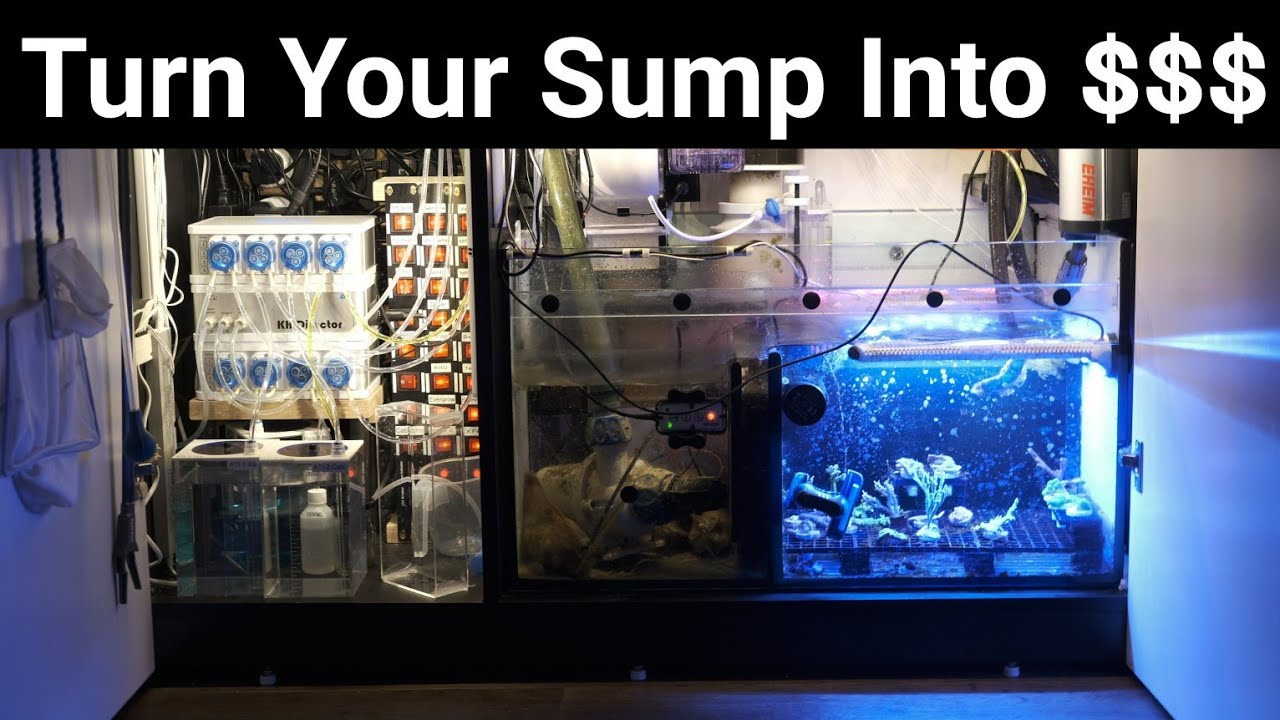 Red Sea Reefer Frag Tank Sump Mod