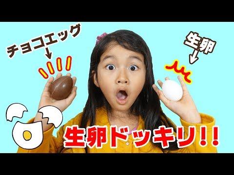 ドッキリ!!もしも、チョコエッグの中身が生卵だったら...!?ディズニーチョコエッグ9himawari-CH