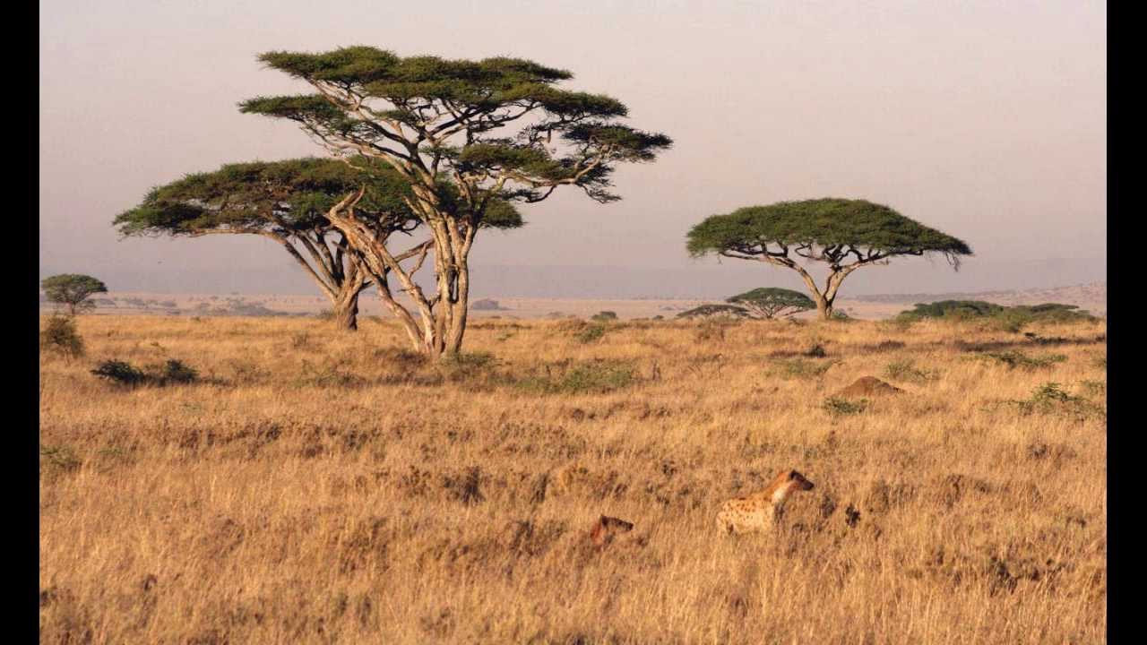 zambia hermosos paisajes - hoteles
