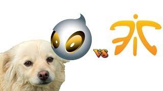 Dog Predicts Results In Cs:go, Fnatic-dignitas, 19-05-2014