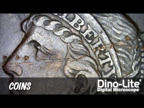 Dino-Lite Applications: Coins