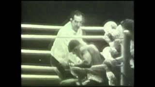 기적의 빛, 무하마드 알리(Muhammad Ali) & 분디니(Bundini) - 나비처럼 날아서 벌처럼 쏘다