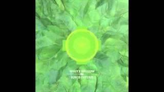 White Willow - Det Omvendte Bæger (excerpt)