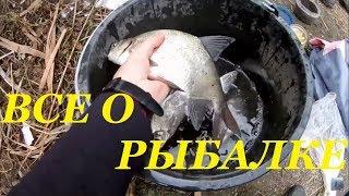 Рыбалка в октябре   Азовское море Ейск рыбалка