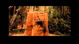 Термиты. Война