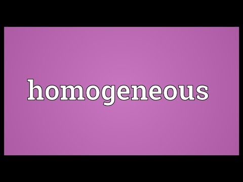 Homogeneous Meaning