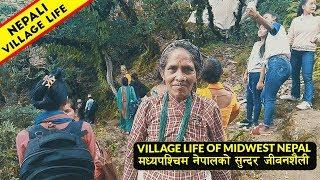 Village life of Nepal   नेपाली पहाडको सुन्दर जीवनशैली   IamSuman