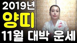 [신점잘보는곳][인천용한점집] 2019년 11월 양띠 대박 운세