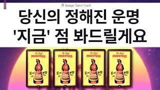 [타로카드] 내 운이 물갈이되는 시기는 언제? (feat.대운)