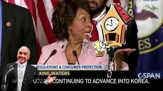 Democrats, America the Stupid