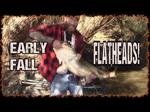 Early Fall Flatheads