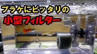 ★商品レビュー★プラケにピッタリ!『ベタのフィルター』【大分グッピーファンクラブ】 thumbnail