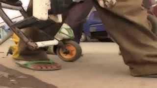 Смешная обезьяна и Мотоцикл