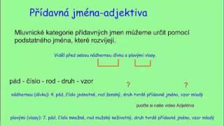 Mluvnické kategorie - základní přehled
