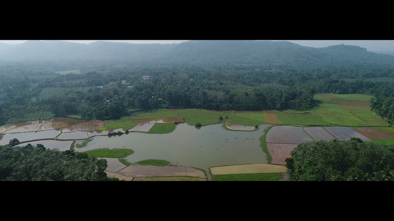 Havala malayalam shortfilm teaser
