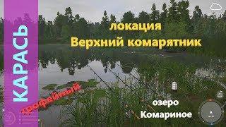 Русская рыбалка 4 озеро Комариное Трофейный карась на старой точке