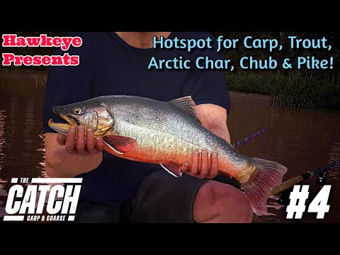 the-catch:-carp-and-coarse---hotspot-for-carp,-trout,-arctic-char,-chub,-&-pike!