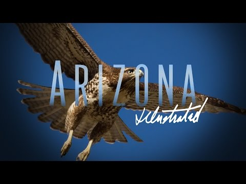 Arizona Illustrated Episode 331
