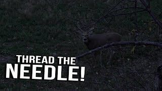 Just the Hunt - SemiLive Hunting Action- Thread the Needle
