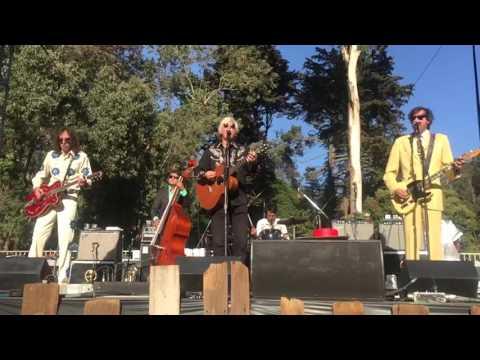 ROBYN HITCHCOCK & THE SADIES -