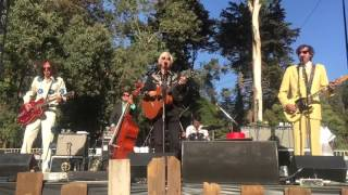 """ROBYN HITCHCOCK & THE SADIES - """"Nothing Was Delivered"""" (Bob Dylan cover) 10/4/15"""