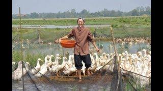 Hoài Linh - Tấn Beo - Hiếu Hiền - Hoàng Sơn - Trấn Thành Khiến khán giả Cười Bể Bụng - Hài Việt Mới