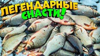 ЛЕГЕНДАРНЫЕ СНАСТИ НА КАРАСЯ СДЕЛАЛИ РЫБАЛКУ ловля карася рыбалка на карася