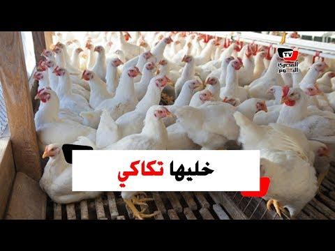 «خليها تكاكي» حملة جديدة لمقاطعة الغلاء المفاجئ لأسعار الدجاج  - 17:55-2019 / 2 / 20