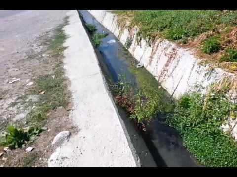 Ismayilli Mican video 1