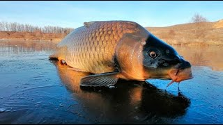 Как ловить Карпа зимой ЗИМНЯЯ ловля КАРПА рыбалка карп приманки ловлякарпа carpfishing howtomake
