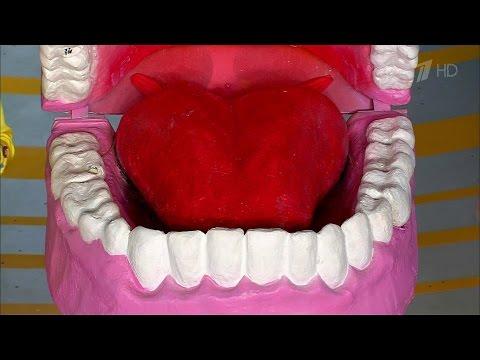 Что делать, если вам выбили зуб. Жить здорово! (28.03.2016)