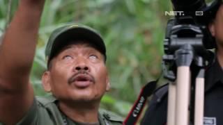 Pesona Alam Anak Gunung Krakatau - Indonesia Bagus