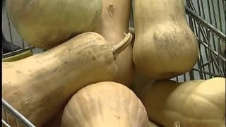 Венский овощной оркестр показал в Перми кухню музыки(, 2012-10-30T12:32:42.000Z)