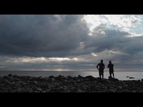 Islas de México - Isla Guadalupe II (26/06/2017)