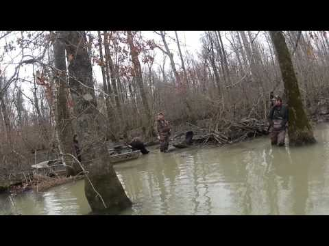 Arkansas Duck Hunting on Black River
