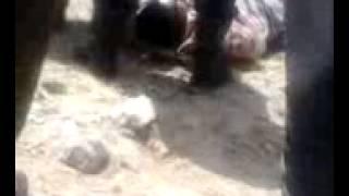 حادث مروع بطريق الرابط بين ولايتي باتنة و بسكرة - بعين التوتة