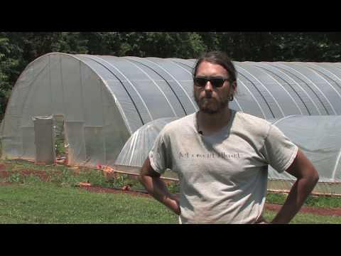 Managing marketing & financial risks on TN organic farm