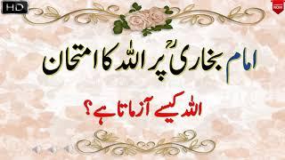 Imam Bukhari Per ALLAH ka Imtihan || How ALLAH Test People