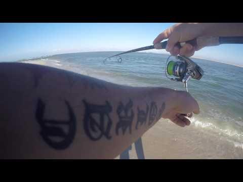 Surf Fishing Matanzas Inlet, St Augustine: HOT BITE!!