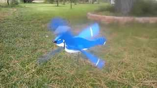 Blue Bird Whirligig