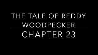 The Tale of Reddy Woodpecker Chapter 23- Children's Classic Audio Books