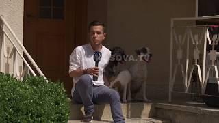 Seksi me kafshe, probleme ne femijeri - 23.07.2017- Klan Kosova